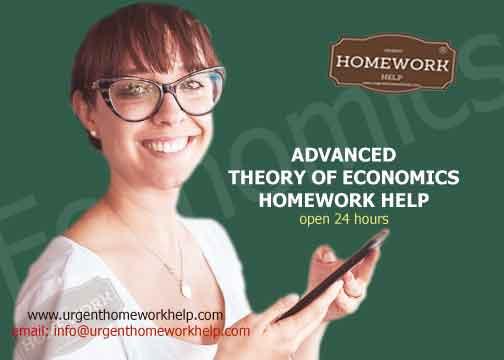 advanced theory of economics homework help