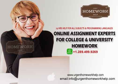 online assignment expert