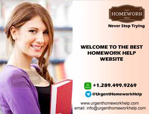 best homework help website online