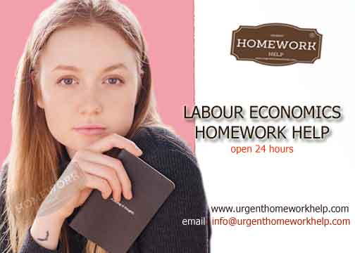 labour economics homework help